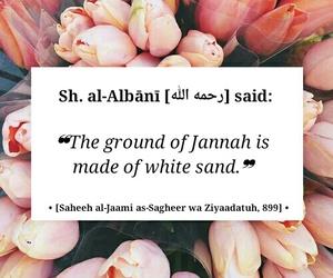 allah, muslim, and sunni image