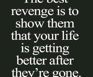 revenge, life, and quote image