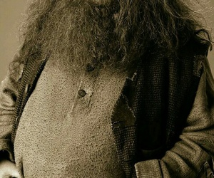 film, harry potter, and rubeus hagrid image