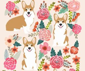 bloom, dog, and flowers image