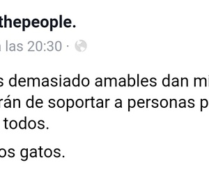 facebook, frases, and miedo image