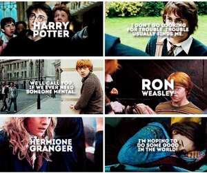 family, harry potter, and hermione granger image