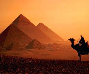 egypt, pyramid, and camel image