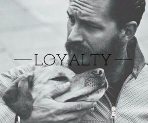 animals, beard, and dog image