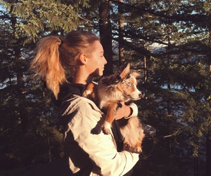 blonde, dog, and nature image