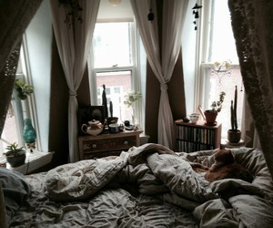 bed, bedroom, and cat image