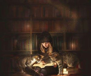 book, cats, and library image