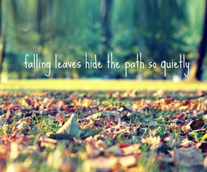 leaves, autumn, and quotes image