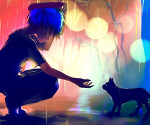 cat, anime, and rain image