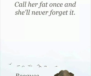 funny, elephant, and fat image