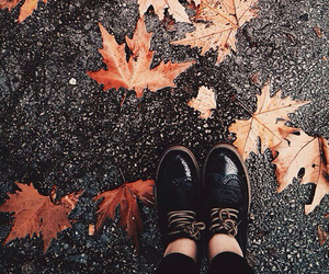 autumn, vintage, and hipster image