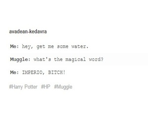 books, harry potter, and hp image