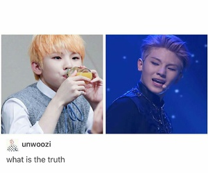 Seventeen, woozi, and funny image