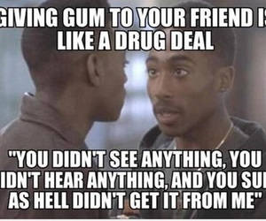 funny, gum, and friends image
