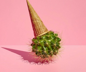 pink, cactus, and ice cream image