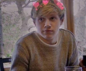 icon, one direction, and niall horan image