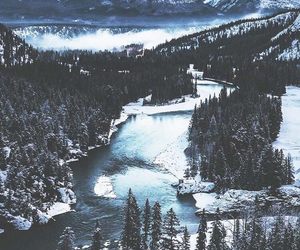snow, mountains, and forest image