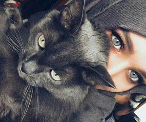 eyes, cat, and hijab image