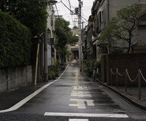 theme, japan, and aesthetic image