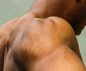 arms, back, and muscels image