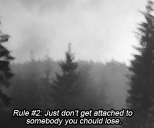 grunge, quote, and rules image