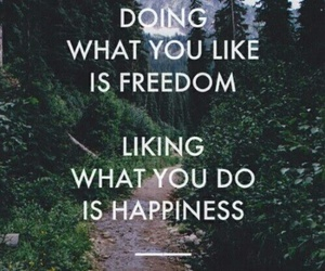 freedom, happines, and life image