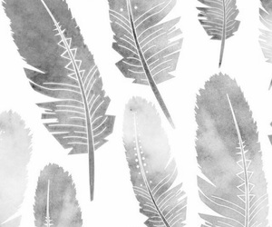 feather, feathery, and wallpaper image