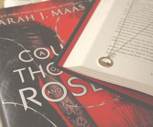 books, sarah j. maas, and court of thorns and roses image