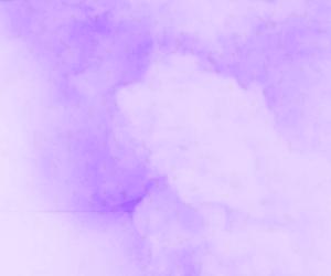purple and header image
