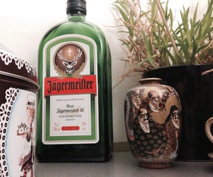 alcohol, vintage, and jagermeister image