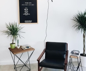 decor, interior, and plants image