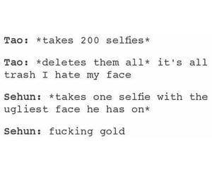 exo, funny, and tao image