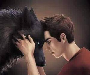 teen wolf, sterek, and wolf image