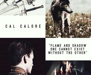 silver, victoria aveyard, and cal calore image