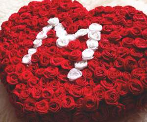 M, flowers, and red image