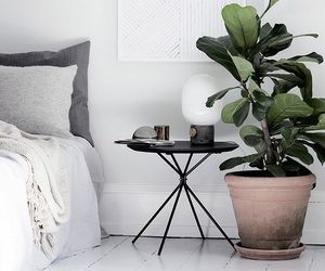 interior, bedroom, and plant image