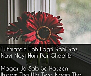 shayari, heart touching lines, and two lines poetry image
