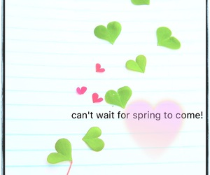 clover, heart, and spring image