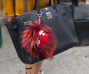 fendi and hermes image