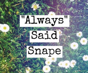 always, severus snape, and lily evans image