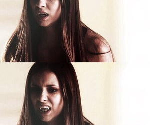 elena, vampire, and the vampire diaries image
