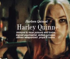harley quinn, suicide squad, and background image