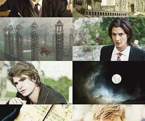 sirius black, james potter, and harry potter image