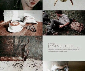james potter, aesthetic, and potter image