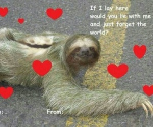 sloth and valentines day image