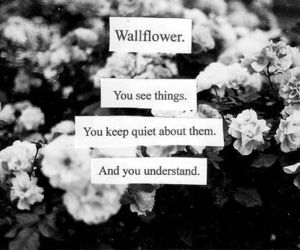 wallflower, quotes, and flowers image