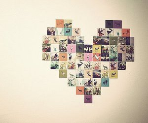 heart, photography, and photo image