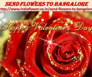 online florist, florist in bangalore, and send flowers to bangalore image