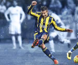 manchester united, netherlands, and robin van persie image