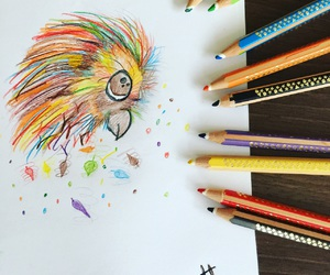 color, drawings, and parrot image